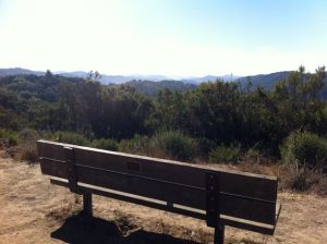 Bench on East Ridge Trail