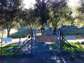 Redwood Trail entry gate - sign in and take a right.