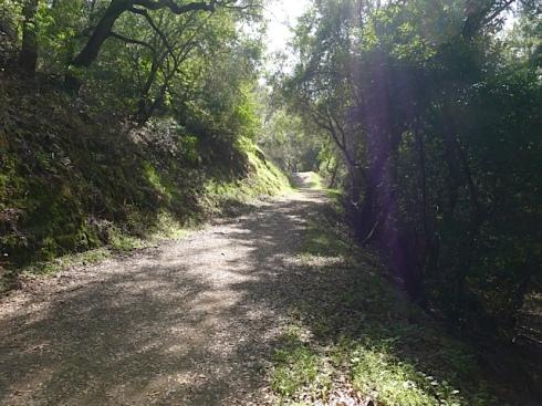 Kings-Canyon-Trail