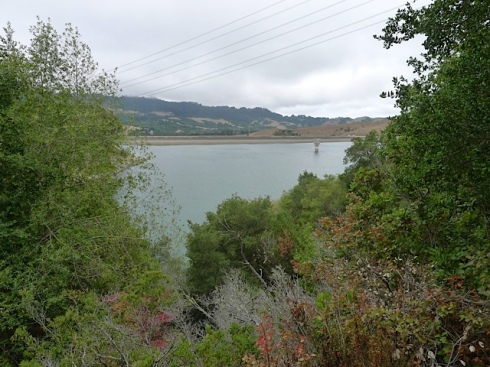 View of Briones Dam from trail