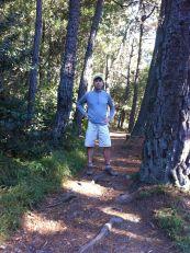Eastport-pine-steve