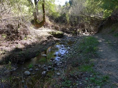 Buckhorn Creek
