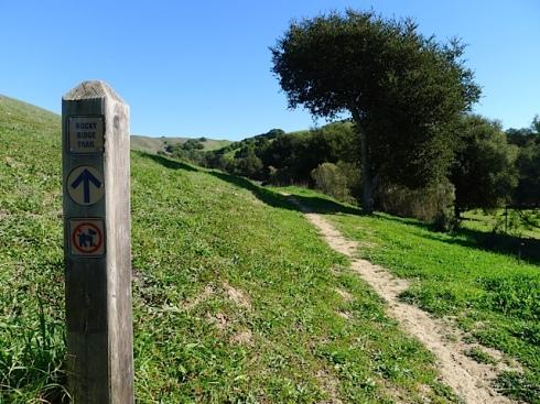 Rocky-Ridge-Start